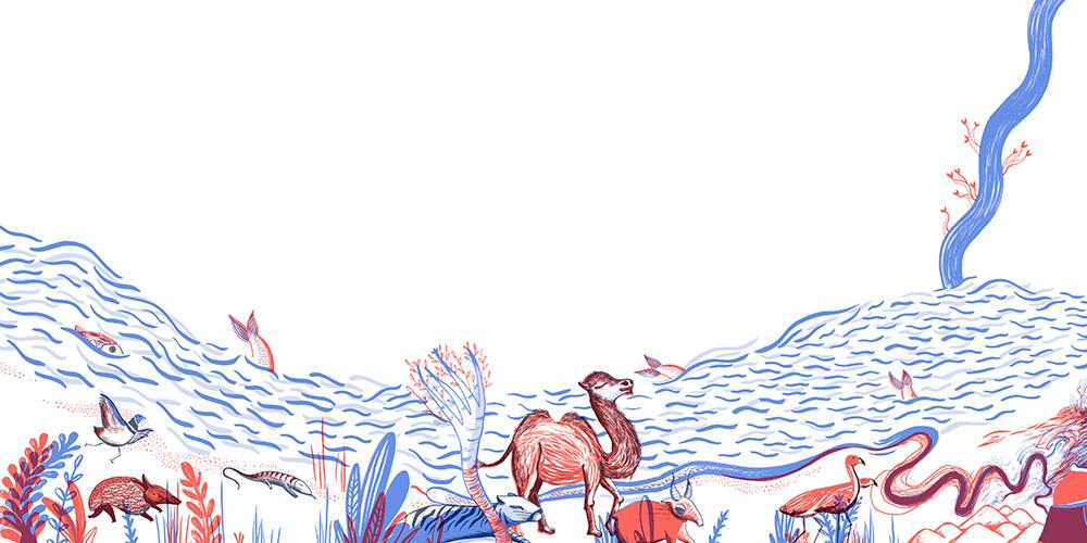 Catálogo Iberoamerica ilustra
